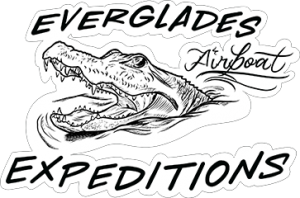 everglades airboat expeditions